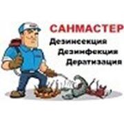 Логотип компании ООО «Санмастер» (Чебоксары)