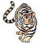 ТКА «тИгра»