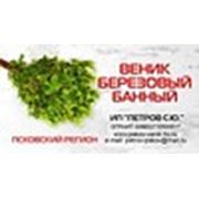 Логотип компании ИП Петров С. Ю. (Псков)