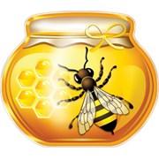 Алтайский мёд в Раменском