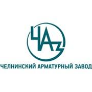 Челнинский арматурный завод