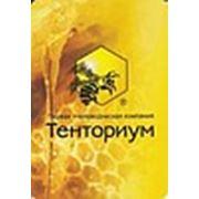 «Тенториум» первая пчеловодческая компания