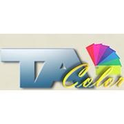 TA Color, Компания