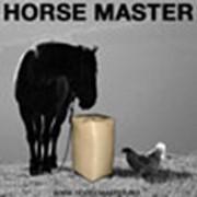 Horsemaster (Хорсмастер), ООО