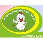 Росиникс-Ком, ООО