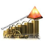 Консалтинговая компания Leader Komek,ТОО