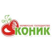 Фермерське господарство Коник, ЧП