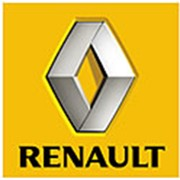 Renault Kangoo, ЧП