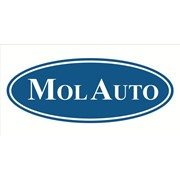 Логотип компании Holding MolAuto, SA (Кишинев)