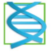 ДНК Семьи