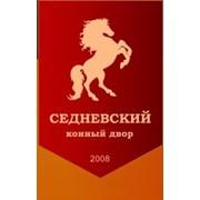 Конный двор Седневский, ЧП