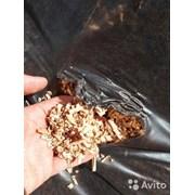 Опилки лиственных пород