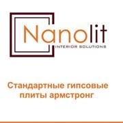 Nanolit