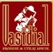 Vastdial & Co, SRL