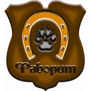 Логотип компании Фаворит, ИП (Улан-Удэ)