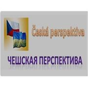 Чешская перспектива, ООО