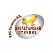 Кулаков В.В., ИП