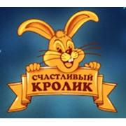 Счастливый кролик, ООО