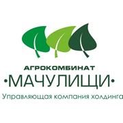 "Управляющая компания холдинга ""Агрокомбинат ""Мачулищи"""