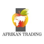 Afrikan Trading (Африкан Трейдинг), ТОО