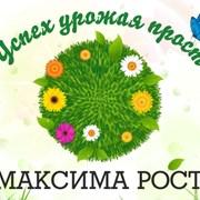 МАКСИМА РОСТ