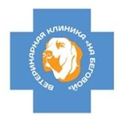 Ветеринарная лаборатория на Беговой, ООО