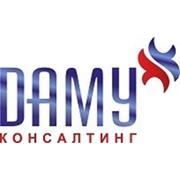 ДАМУ Консалтинг