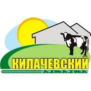Килачевский, СПК
