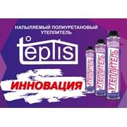 Ппутеплис