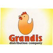 Grandis (Грандис), ТОО