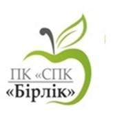 ПК СПК Бірлік