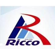 Логотип компании Dionex-Consulting, SRL (Salonul Ricco) (Кишинев)
