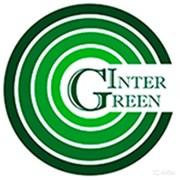 Интер Грин