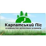 Карпатский лес, ЧП