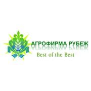 Агрофирма Рубеж, ООО