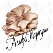 АльфаТориум