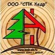 СПК Кедр