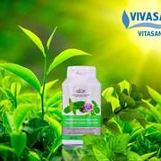 Зеленый чай с мятой » (жевательные таблетки)  фото