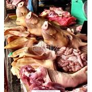Продукция животноводства фото