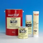 Масло для пищевого оборудования Молислип FMO ISO 46 (Food Machihe OIL), 5 ltr