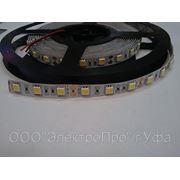 Лента светодиодная 5050-60 14,4W/m цвет холодный белый