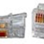 Вилки RJ-10, 11, 12, 45, RG-6, 11, 58, 59, 110 фото