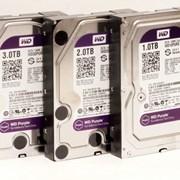 Жесткий диск WD Purple WD10PURX, 1Тб,SATA III фото