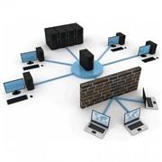 Установка и прокладка локальных сетей (ЛВС) фото