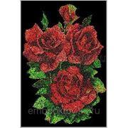 Розы 03 фото