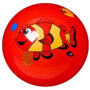 Мяч ПВХ Подводный мир, 22 см, 60 гр., арт.F22021 фото