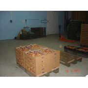 Персики на экспорт фото