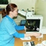 Диагностика лабораторная фото