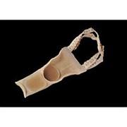 Протектор переднего пальца с межпальцевой перегородкой на тканевой основе (цена за 1 шт.) фото