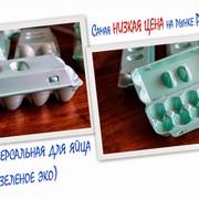 Упаковка для яйца UE-10 SU (зеленое эко) фото